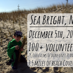 100+ Volunteers Help Plant Dune Grass
